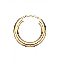 Guld ørecreoler 2,5 x 15 mm